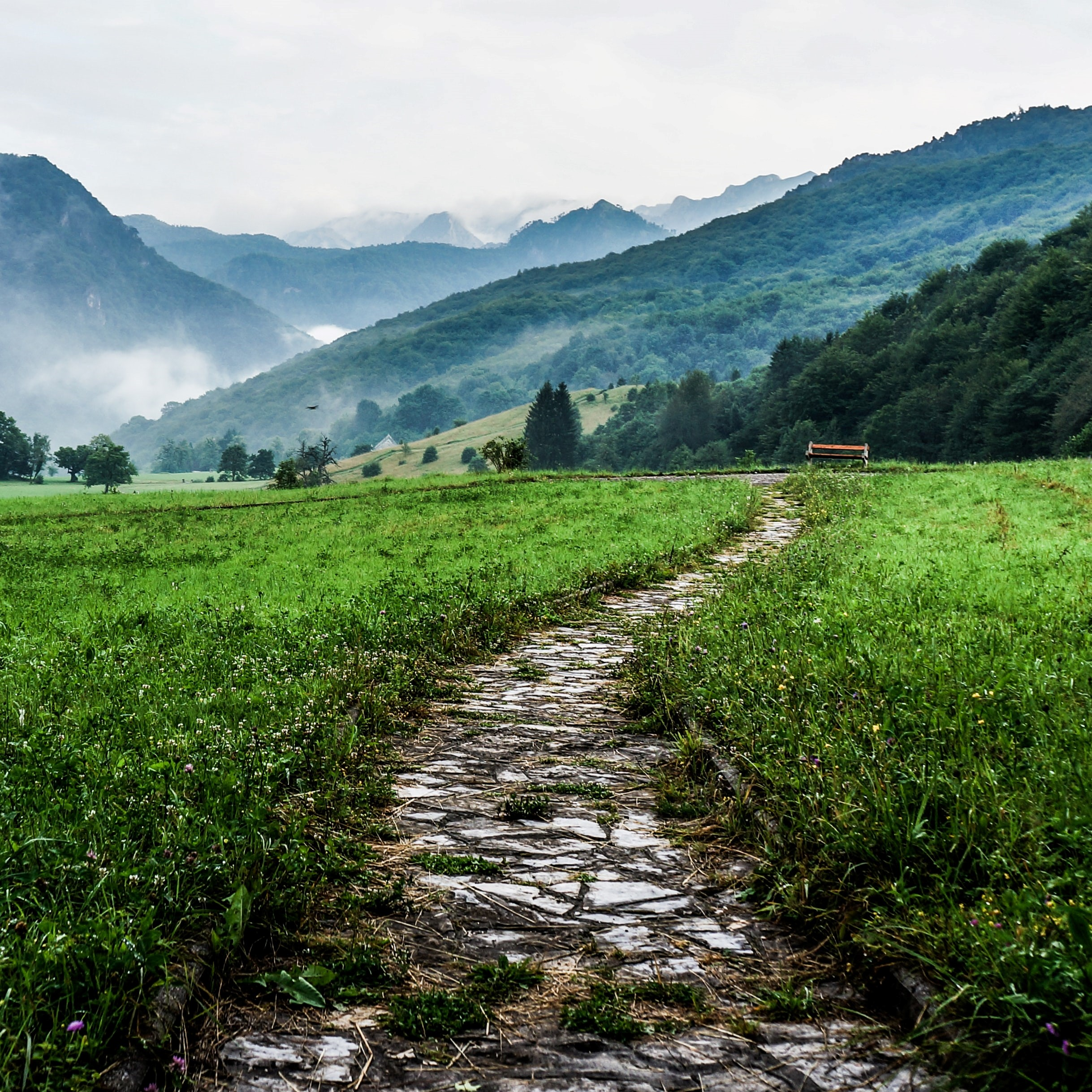 A cobblestone path extending through a valley, with mountains in the background.